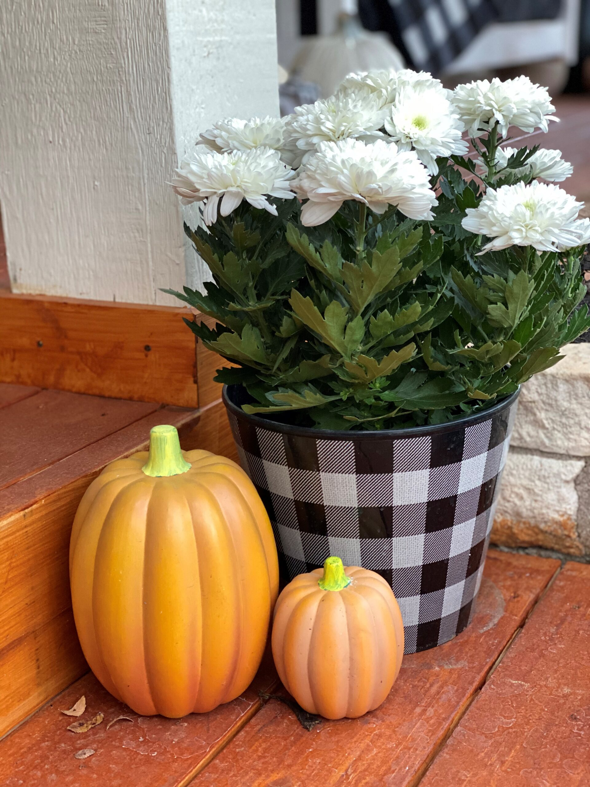 Halloween Front Porch Decorations, Vintage Rustic Front Porch, White Mums, Black and White Buffalo Check, Pumpkins